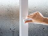 Увлажнитель воздуха и влажность в доме и квартире